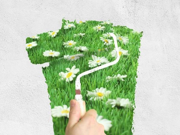 peinture-eco-responsable