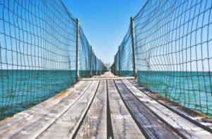 pont bois2