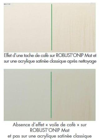peinture innovante robust onip mat