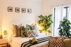 La question qui fâche : peut-on dormir avec une plante verte dans sa chambre ?